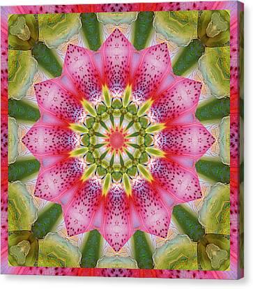 Healing Mandala 25 Canvas Print by Bell And Todd