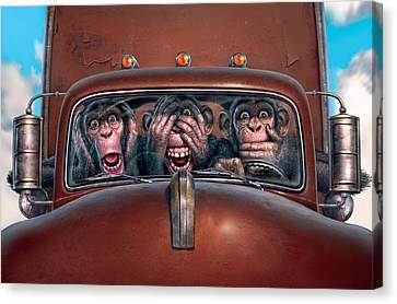 Chimpanzee Canvas Print - Hear No Evil See No Evil Speak No Evil by Mark Fredrickson