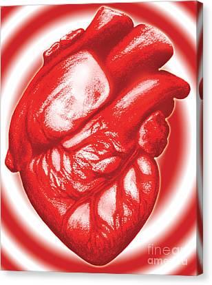 Heart Attack Canvas Print by Dennis Potokar