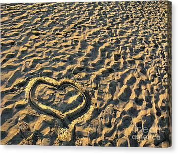 Heart For Valentine's Day Canvas Print by Daliana Pacuraru