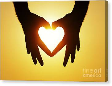 Heart Hands Canvas Print by Tim Gainey