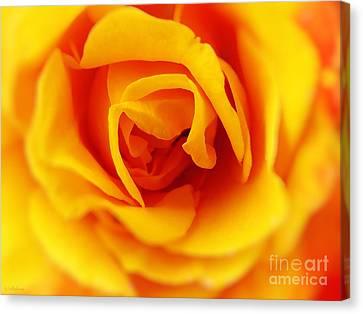 Heart Of A Rose Canvas Print by Ella Kaye Dickey