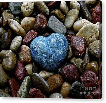 Heart Of Stone Canvas Print by Lisa  Telquist