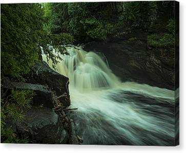 Heart Of Wilderness Canvas Print
