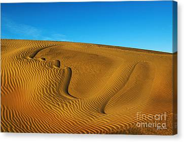 Heart In The Sand Dunes Canvas Print by Yefim Bam