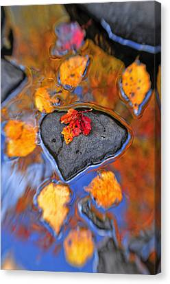 Heart Rock Reflections Canvas Print by Joseph Rossbach