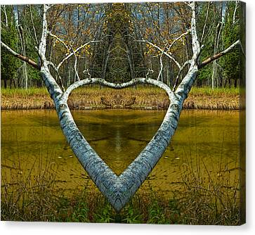 Heart Shaped Branches Canvas Print by Randall Nyhof