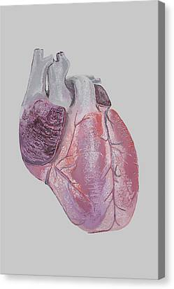 Heart Canvas Print by Terence Leano