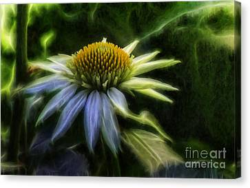 Heart Treasure Canvas Print by Jean OKeeffe Macro Abundance Art