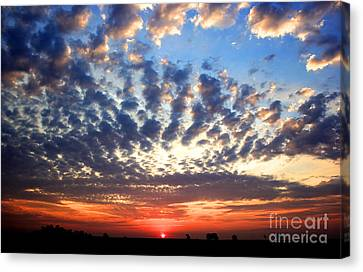 Heartland Sunrise Canvas Print by Thomas Danilovich