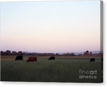 Canvas Print featuring the photograph The Kittitas Valley I by Susan Parish