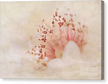 Hearts And Flowers Canvas Print by A New Focus Photography