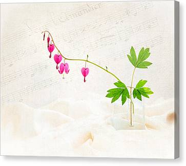 Hearts And Music Canvas Print by Sarah-fiona  Helme