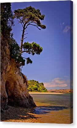 Canvas Print featuring the photograph Heart's Desire Beach by Janis Knight