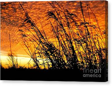 Sunset Heaven And Hell In Beaumont Texas Canvas Print by Michael Hoard