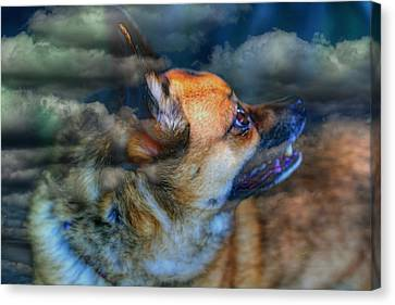 Heaven Bound Canvas Print by Larry Trupp