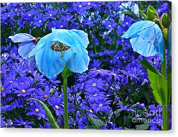 Heavenly Blue On Blue And Purple Canvas Print by Byron Varvarigos