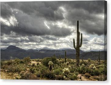 Heavenly Desert Skies  Canvas Print
