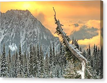 Heavenly Canvas Print by Jeff Cook