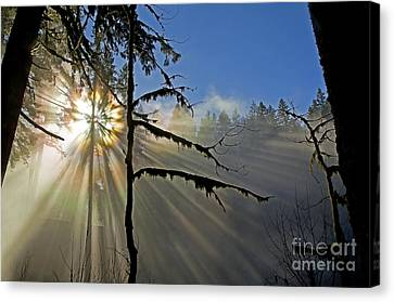 Heavenly Manifestation Canvas Print by Nick  Boren
