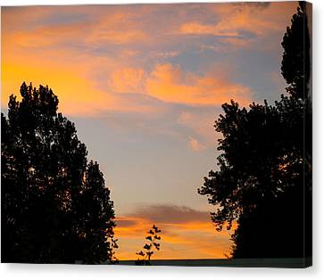Canvas Print featuring the photograph Heavenly Orange by Roseann Errigo