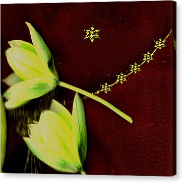 Flower Blooms Canvas Print - Heavenly Stars On The Sacred Sky by Pepita Selles