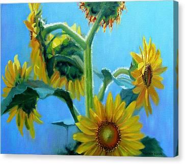 Heavenly Sunlight-sunflowers In Sunlight Canvas Print by Bonnie Mason