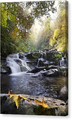 Heaven's Light Canvas Print by Debra and Dave Vanderlaan