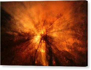 Heavens Canvas Print by Paul  Wilford