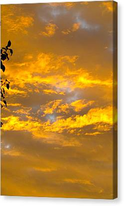 Heaven's Sky Canvas Print by Andrea Dale