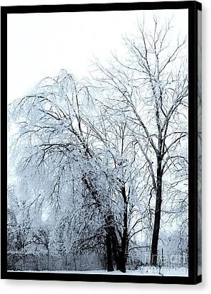 Heavy Ice Tree Redo Canvas Print by Marsha Heiken
