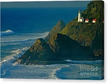 Heceta Head Seascape Canvas Print by Nick  Boren