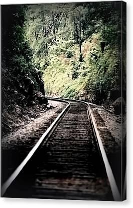 Hegia Burrow Railroad Tracks  Canvas Print