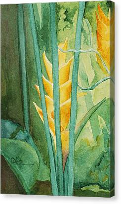 Heliconia Canvas Print by Diane Cutter