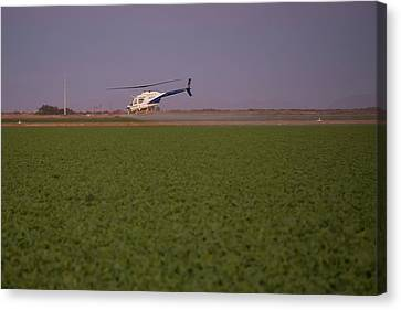 Helicopter Spraying Pesticides Canvas Print
