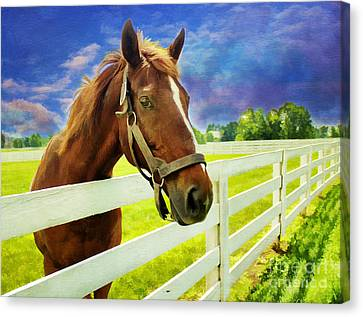 Hello From The Bluegrass State Canvas Print by Darren Fisher