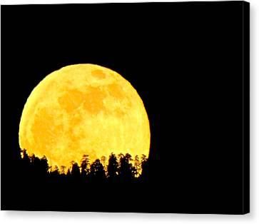 Hello Moon Canvas Print by Feva  Fotos
