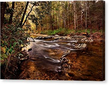 Hells Hole At The Chauga River Canvas Print by Brent Craft