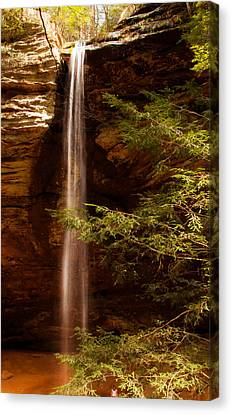 Canvas Print featuring the photograph Hemlocks And Waterfall by Haren Images- Kriss Haren