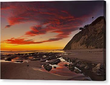 Hendry's Beach  Mg_1327 Canvas Print by David Orias