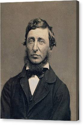 Henry David Thoreau Canvas Print by Celestial Images