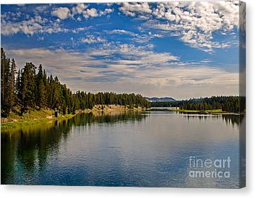 Henry Fork Of Snake River II Canvas Print by Robert Bales