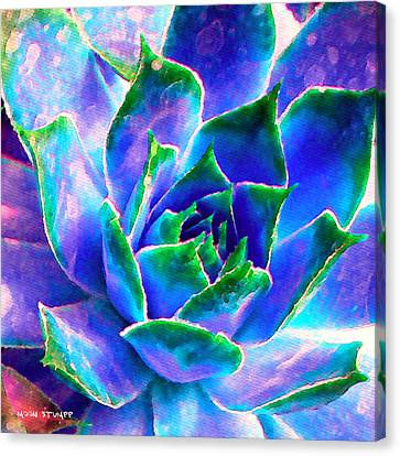 Hens And Chicks Series - Touches Of Blue  Canvas Print by Moon Stumpp