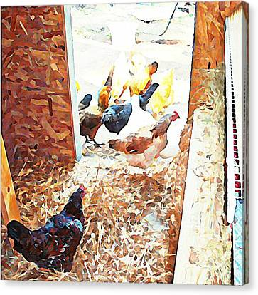 Hens At The Door Canvas Print by Tamara Gantt