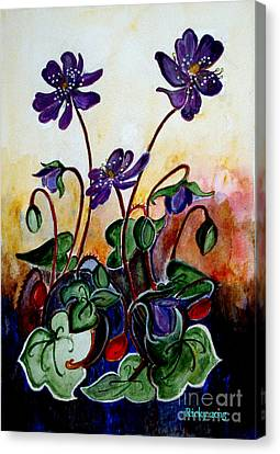 Hepatica After A Design By Anne Wilkinson Canvas Print by Veronica Rickard