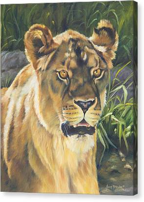 Her - Lioness Canvas Print