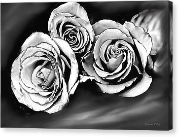 Her Roses Canvas Print by Bonnie Willis