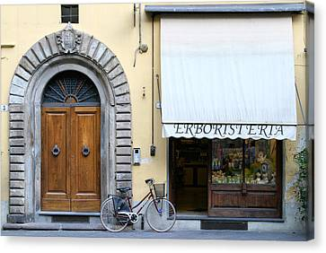 Herbalist Shop Lucca Tuscany Canvas Print by Mathew Lodge