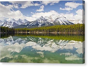Herbert Lake Canvas Print by Dee Cresswell