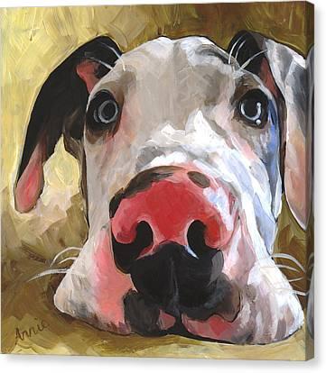 Herbie Canvas Print by Annie Salness